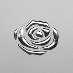 PL 3D ROSES Silver PF met / Silver  mata dekoracyjna Sibu Design